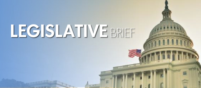 Legislative Brief Archives